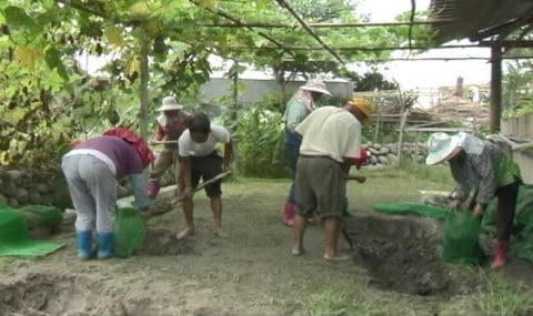 開挖淨水池